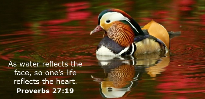proverbs-27-19_orig