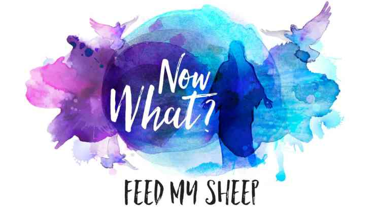 CCC-Now-What-Feed-My-Sheep