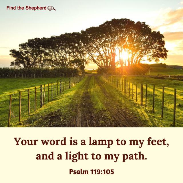 Psalms119-105
