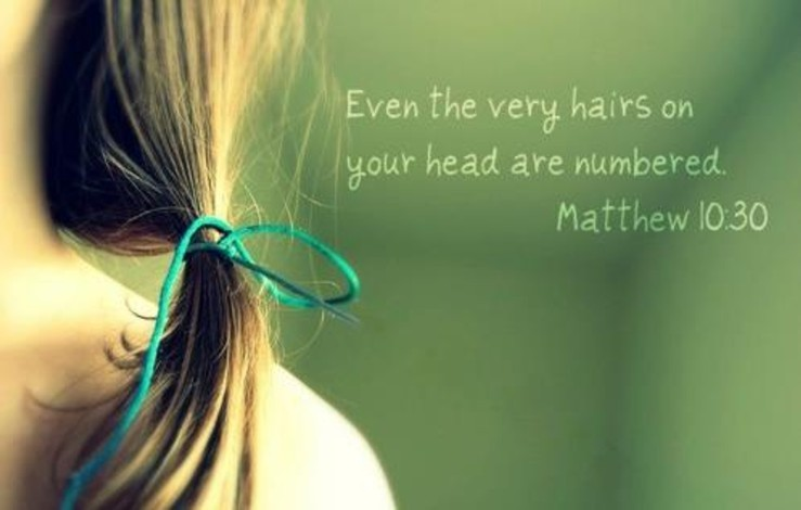 Image result for for even the hairs on your head are numbered""